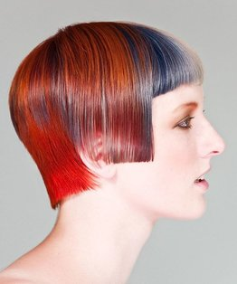 The Tricolloria - Blended Hair Colouring
